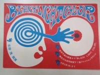 チラシ/ポストカード 吉田茂・個展『BLACK LIGHT, COLOR』