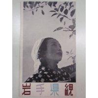 チラシ/観光案内 岩手県・観光と物産 みのる岩手リンゴ